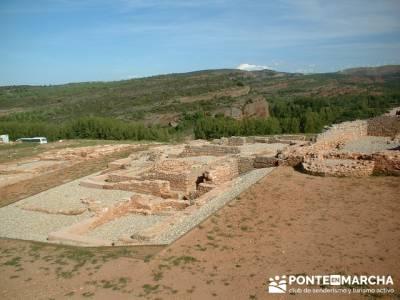 Yacimiento Arqueológico Celtibérico y Romano de Tiermes; rutas faciles senderismo madrid; floracio